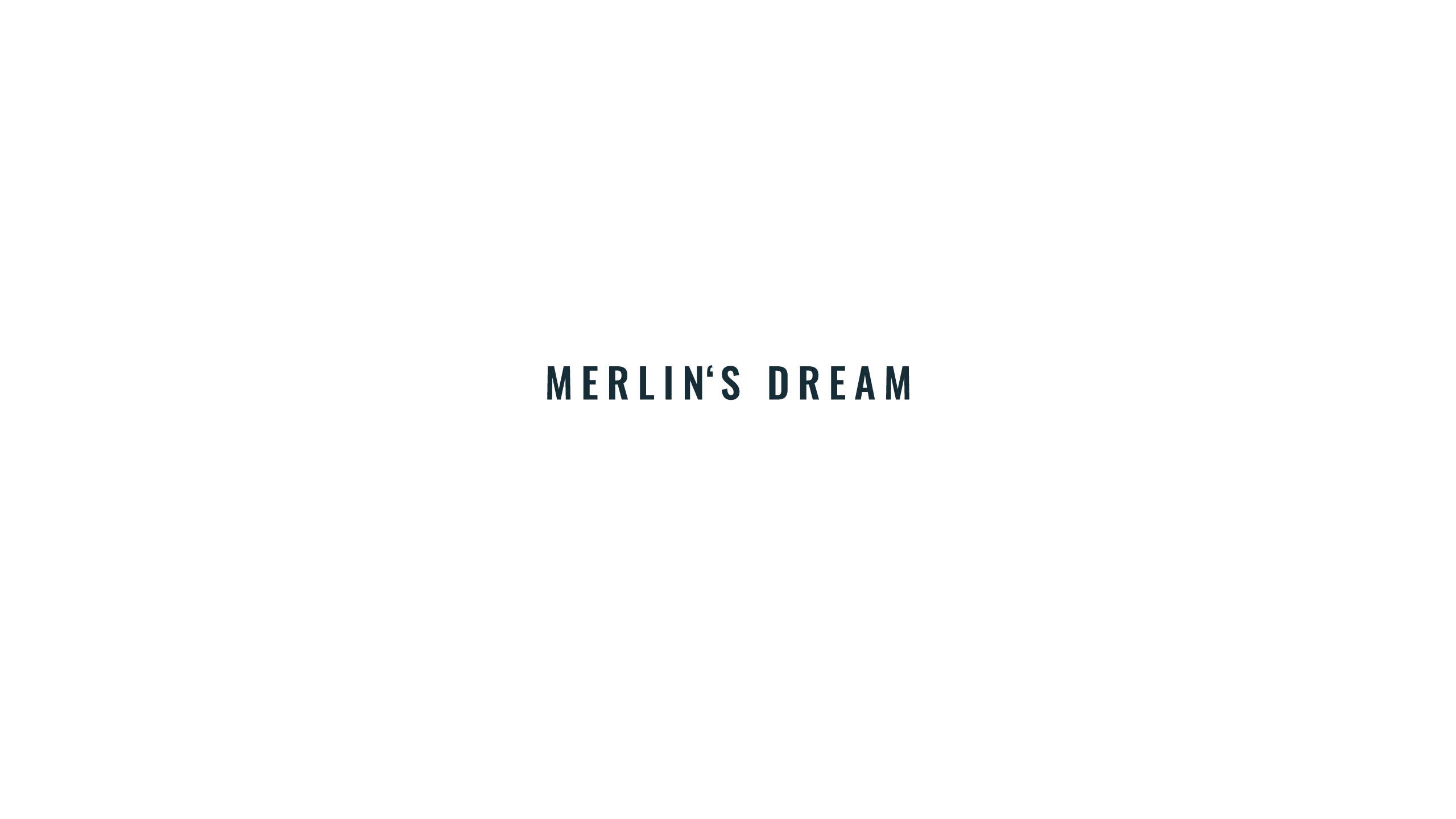 1a_Text_merlins_dream